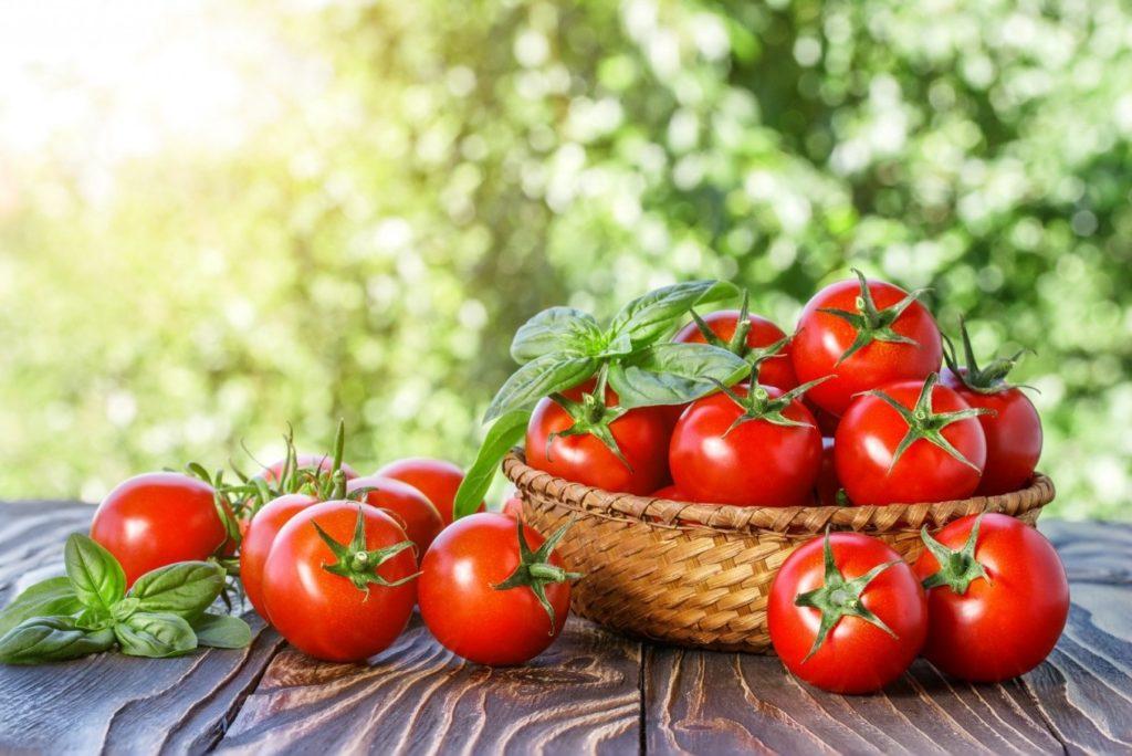 помидоры диета похудение